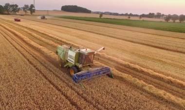 Crece la producción de maquinaria agrícola