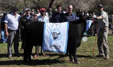 Diego Lodos, titular de la Sociedad Rural habló con Miguel Menchi en ''A Primera Hora''